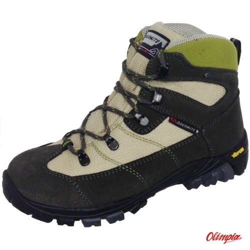 c3afc4bbf84 Dolomite Flash Plus II GTX forest/lime Shoes - Trekking Shoes ...