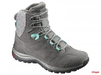 Comfotable Salomon Quest 4D 3 GTX® Men's Hiking Shoes
